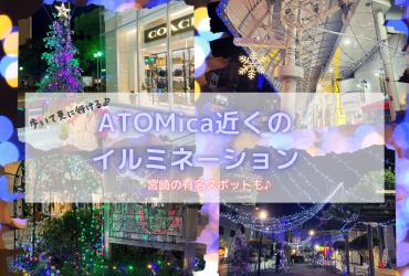 ATOMicaから歩いて見に行ける!宮崎市街中のイルミネーションをご紹介★